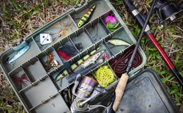 How to Choose Fishing Bait